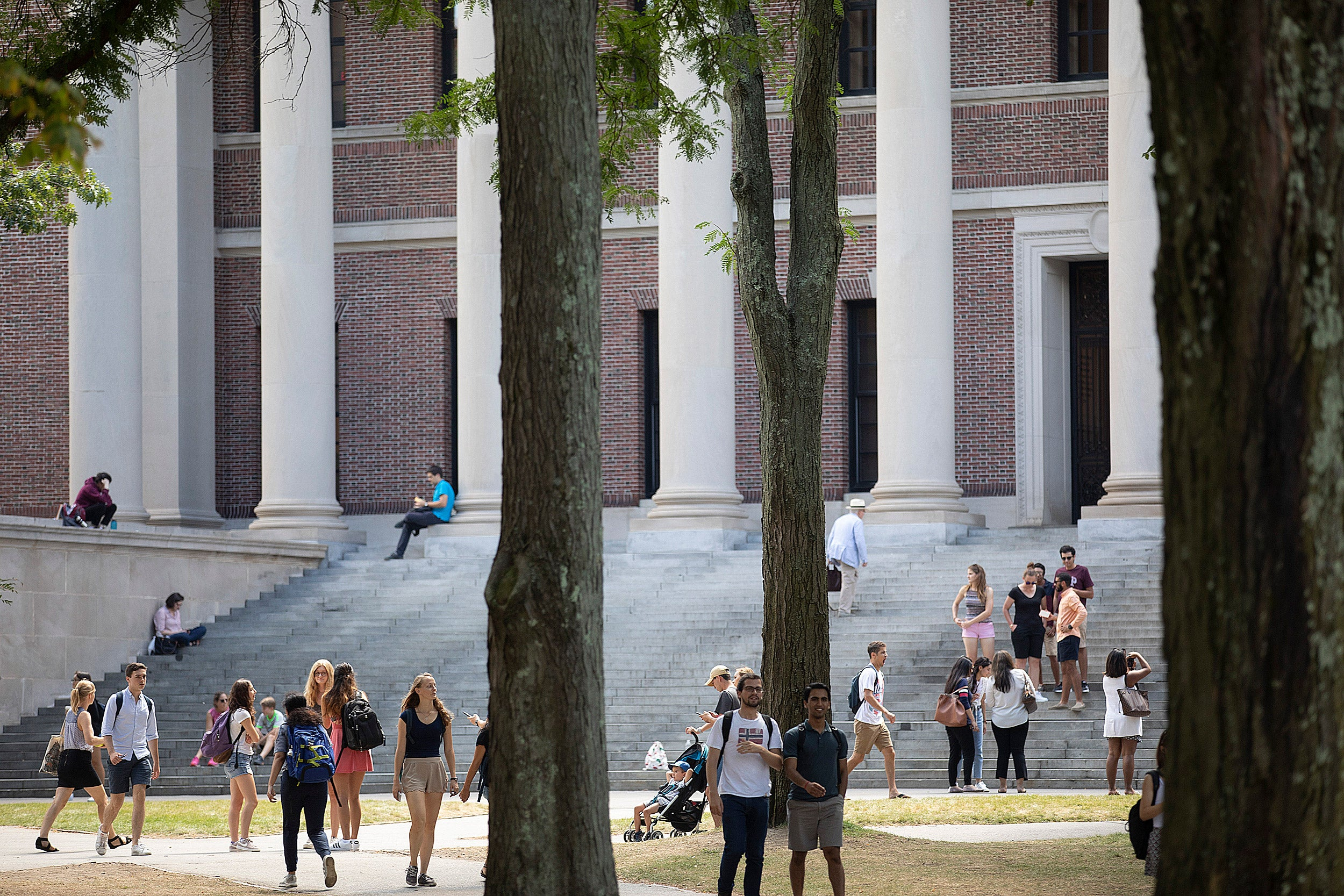 Students outside Widener Library.