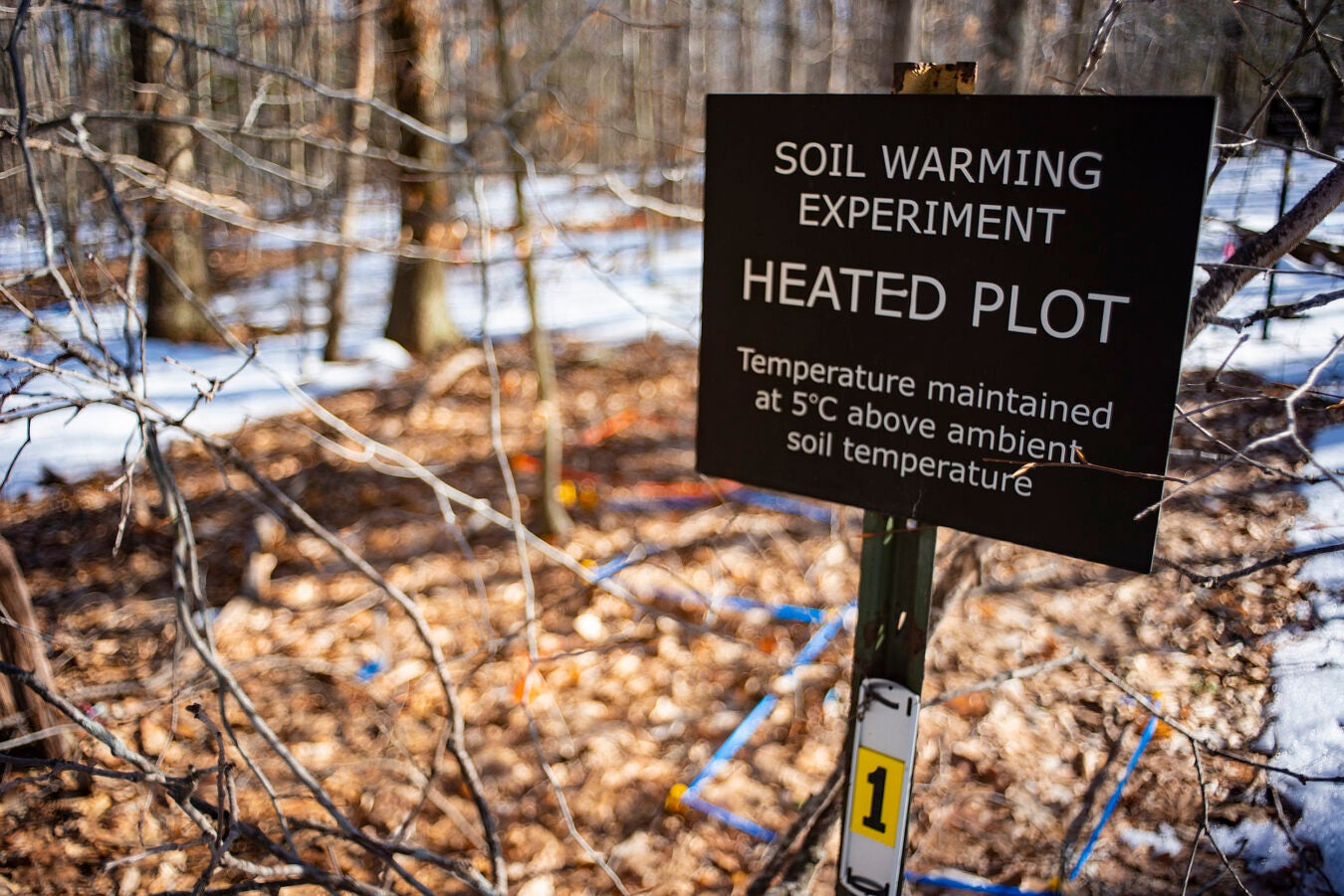 A sign marks the site of a 20-year soil experiment.