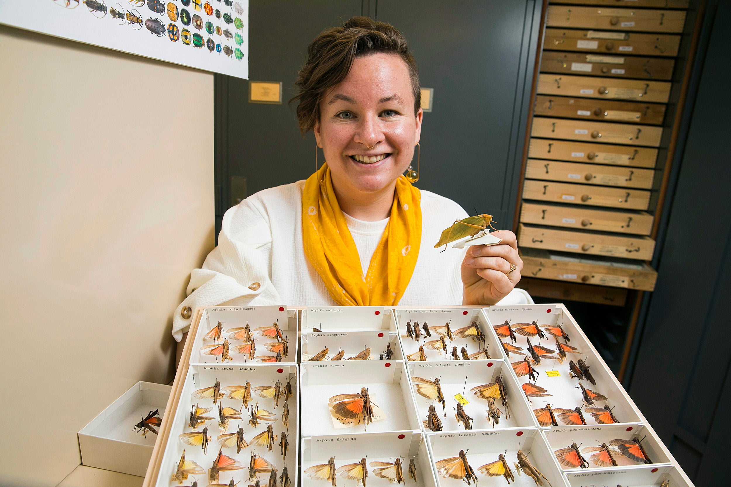 "Mary Salcedo describes her passion for insects like ""trying to find buried treasure, but the treasure is everywhere."""