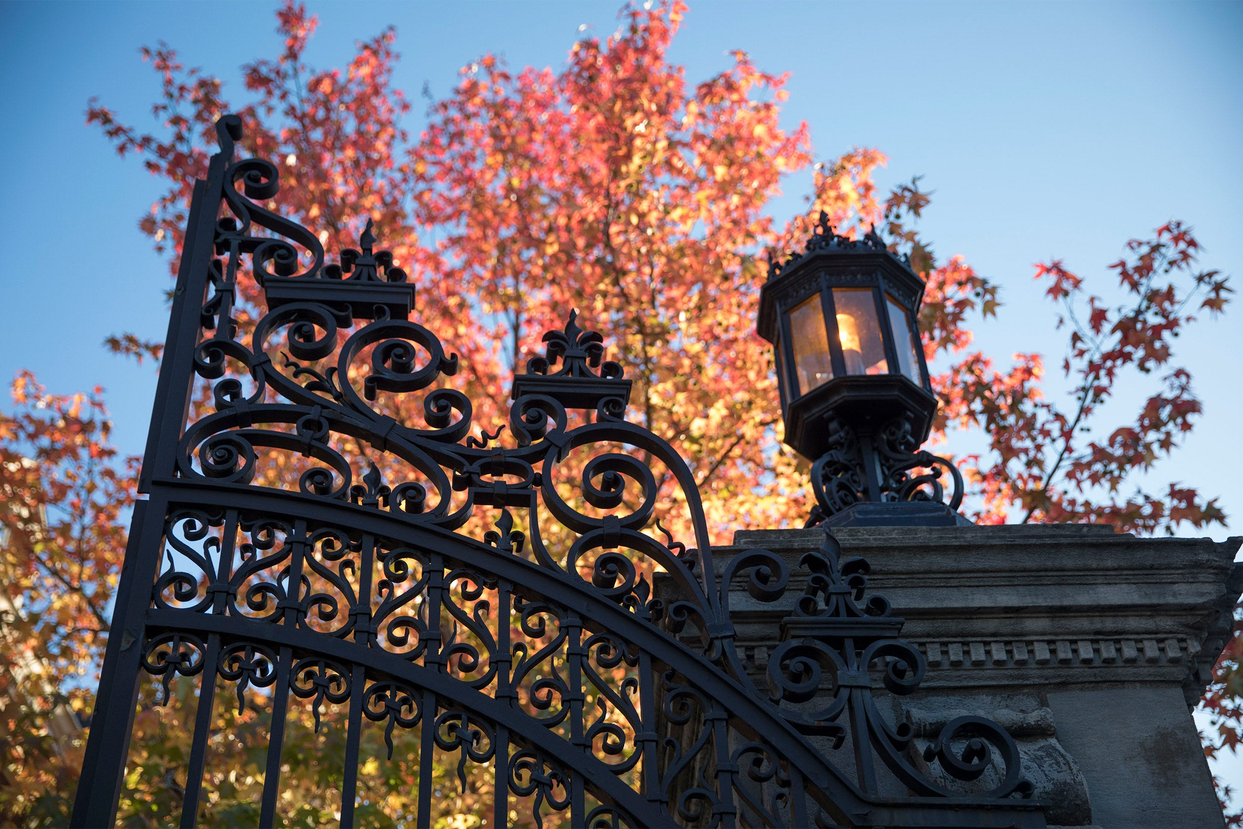 Autumn features of gates and the Barker Center.