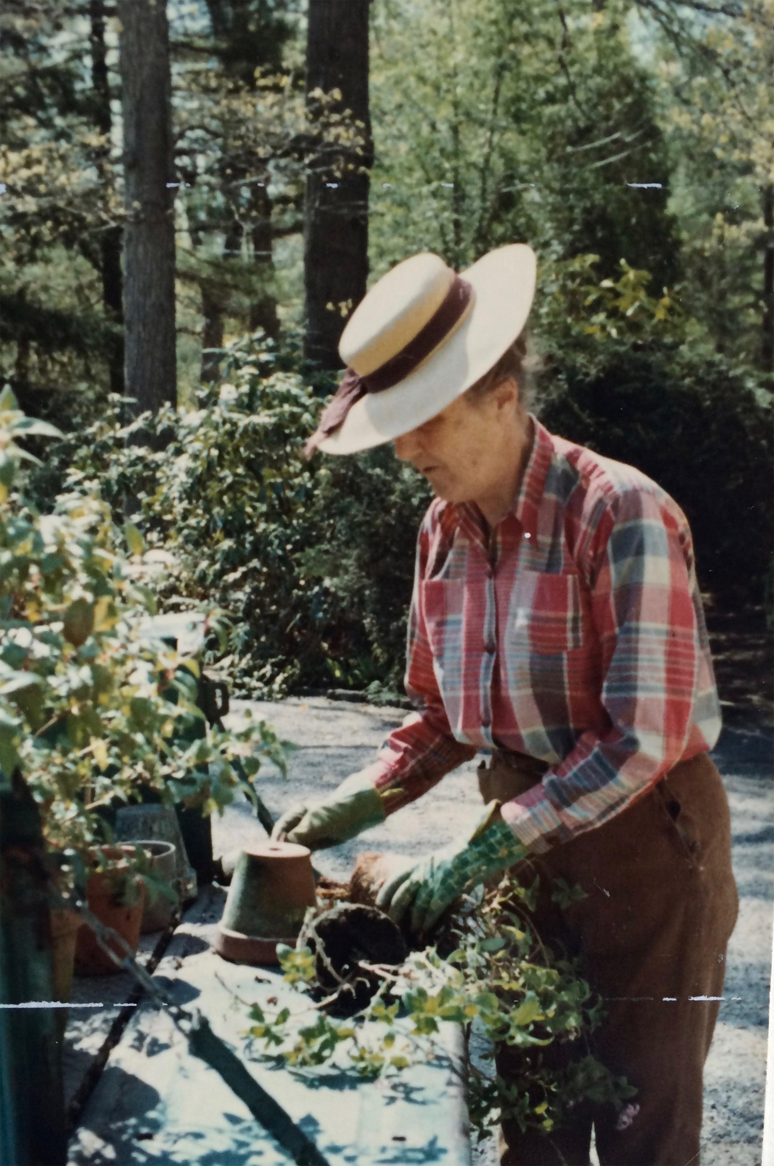 Eleanor Cabot Bradley gardening