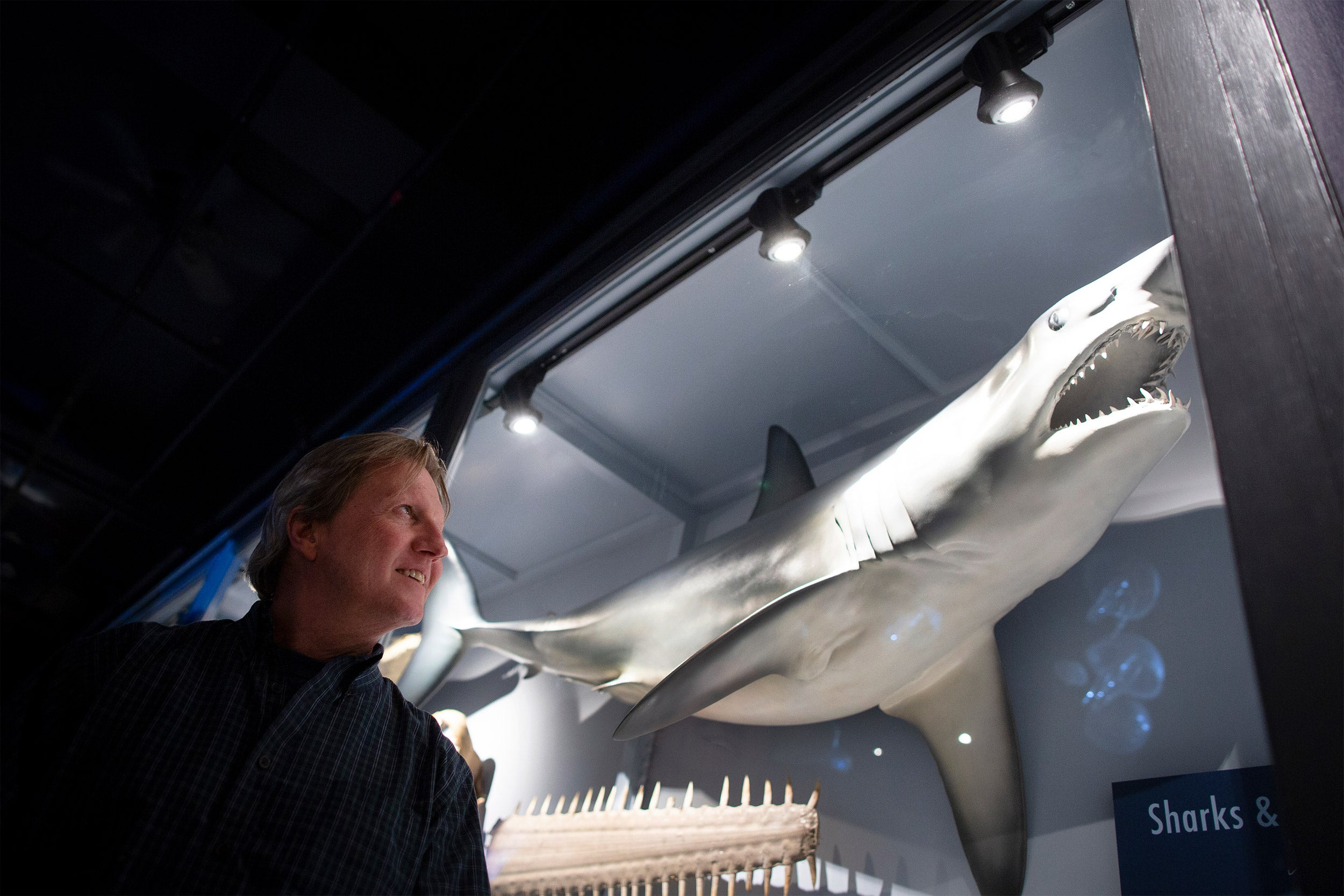 Greg Skomal stands in front of a shark in a glass case