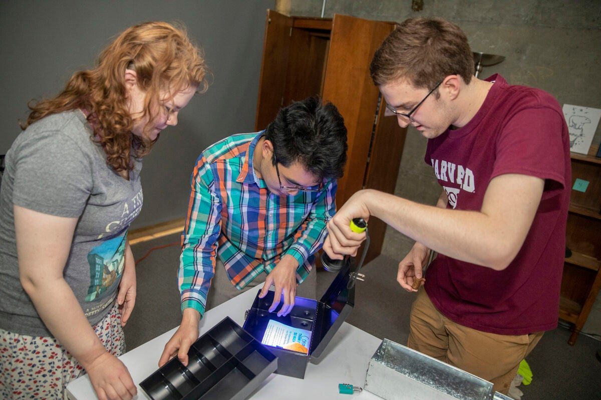 "Jena Lorman (left), Michael Cheng, and Tyler Morris solve puzzles in a sustainability-themed ""escape room."""