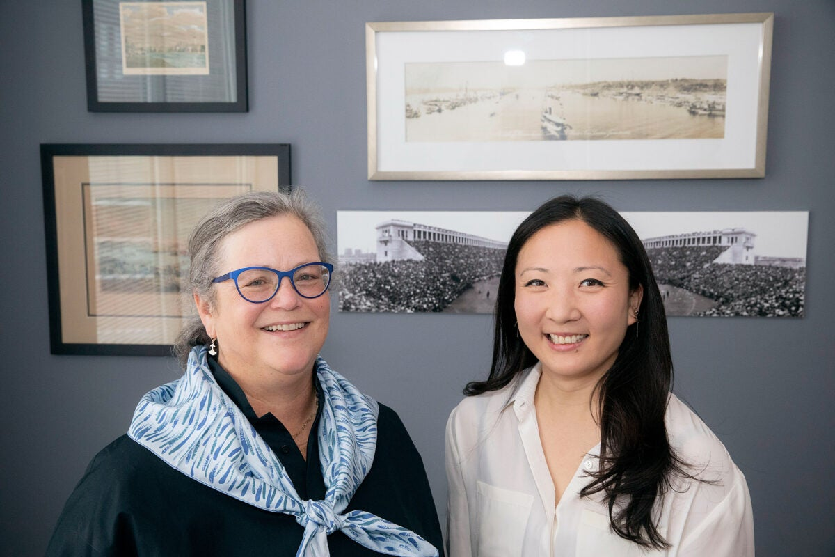Alice Hill '81, Ph.D. '91, will succeed Margaret Wang '09 as president of the Harvard Alumni Association for 2019–2020.