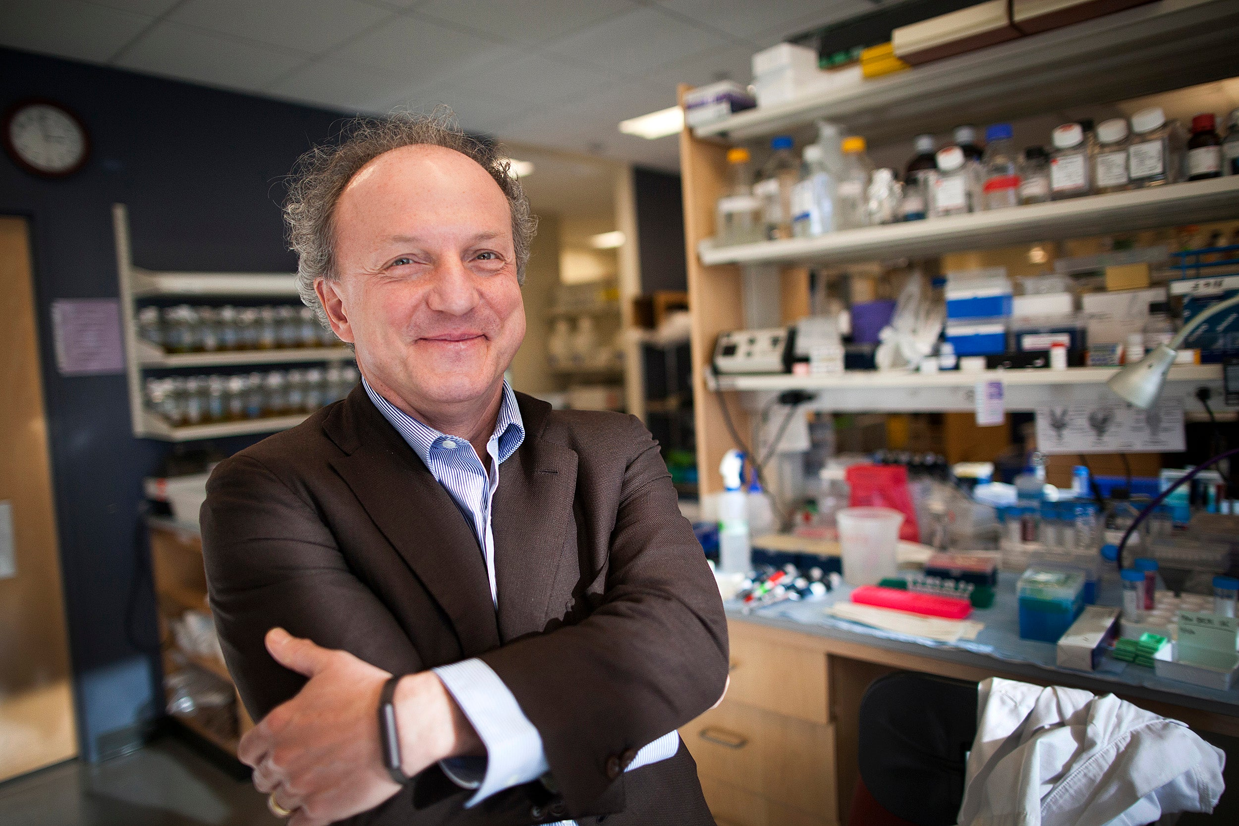 Beth Israel researchers uncover anti-cancer drug mechanism — in broccoli