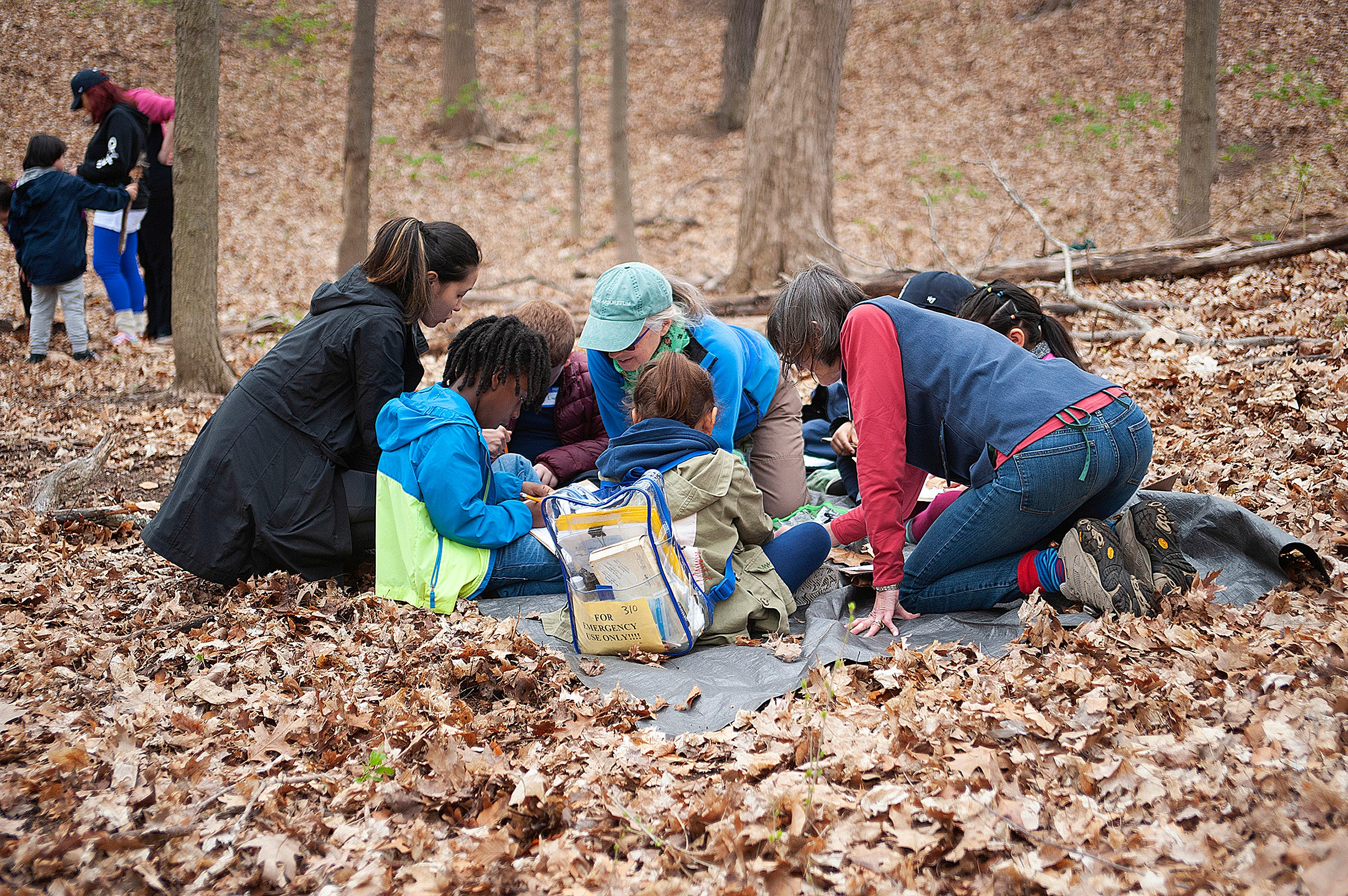 children gathered together to draw leaves