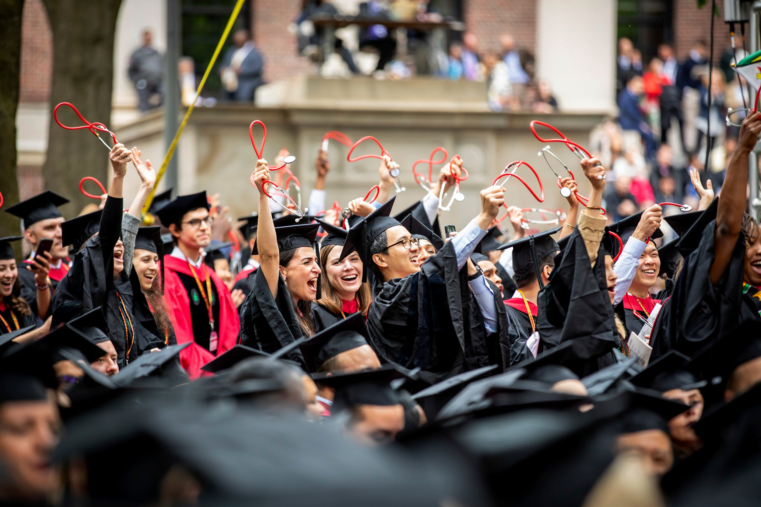Graduates from Harvard Medical School wave stethoscopes in the air.