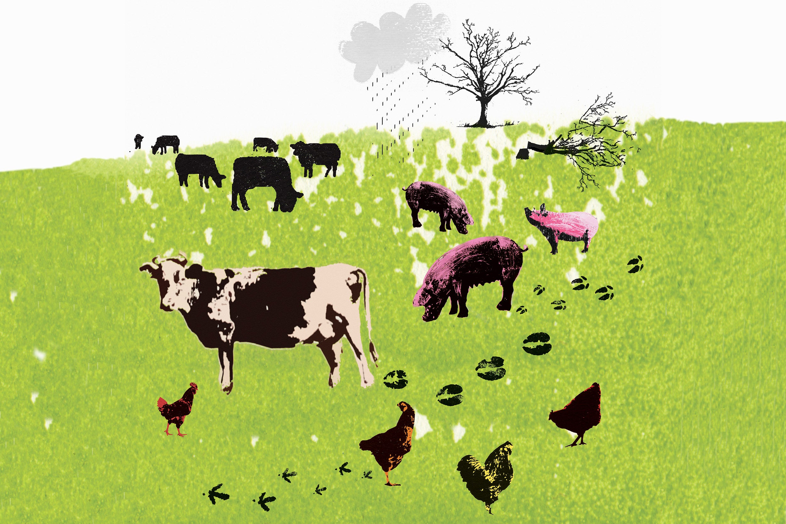 Illustration of farm animals in a field.