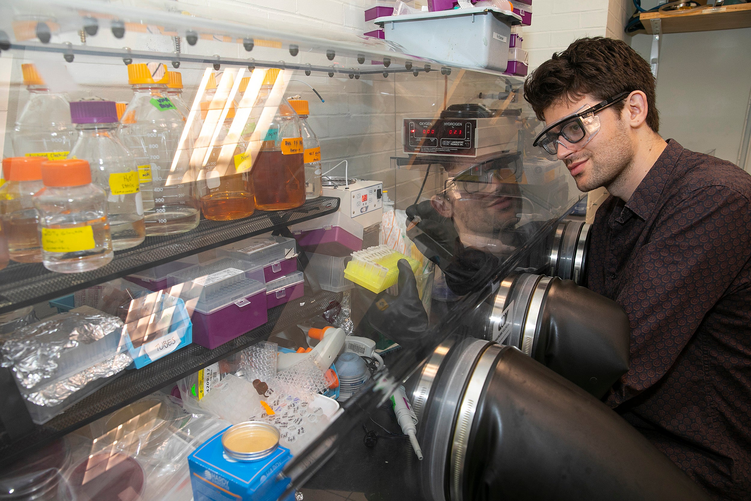 Grad student works in the lab