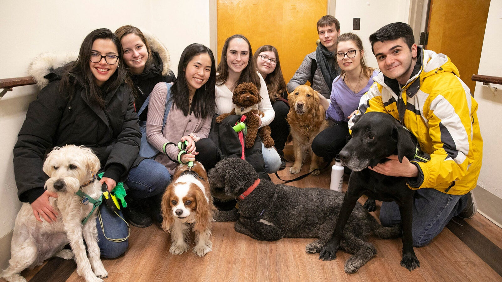 Group shot, eight therapy volunteers and 5 dogs.