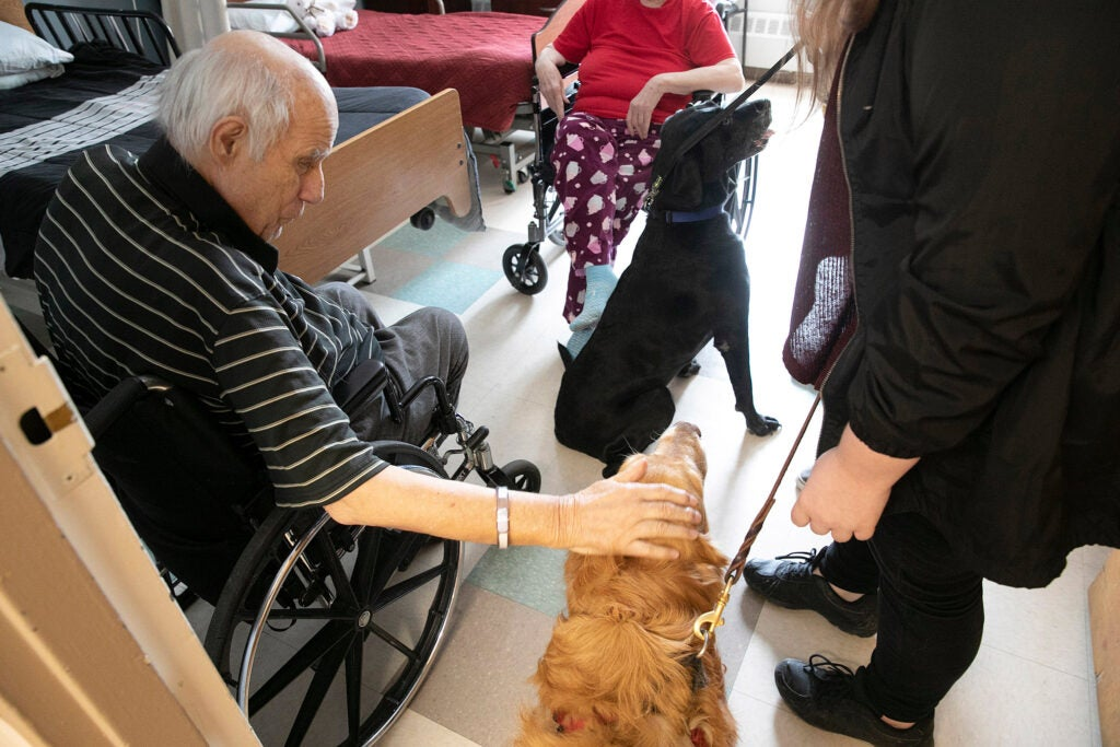 Man in wheelchair petting dog.