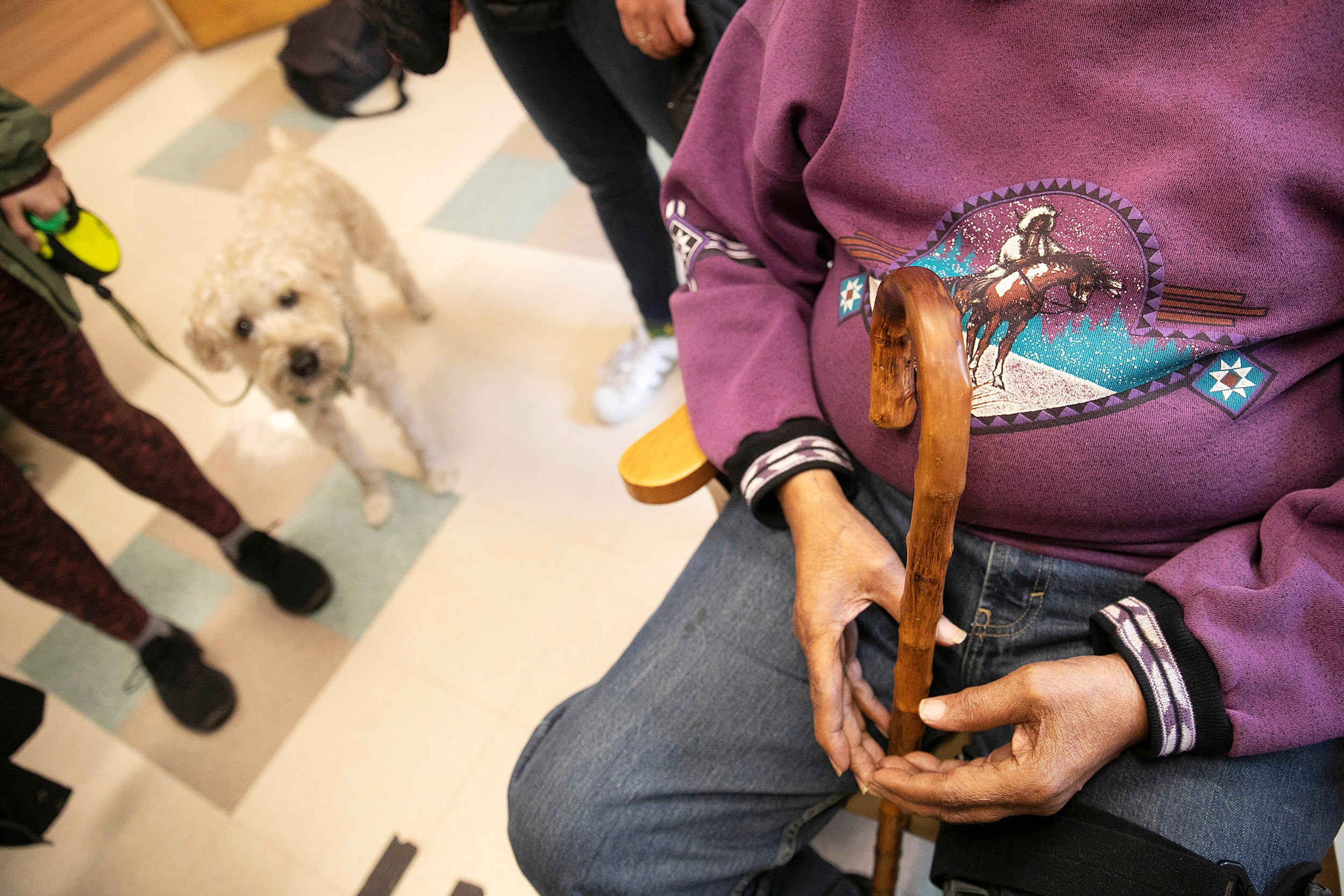 Elderly man in wheelchair, small dog in background.