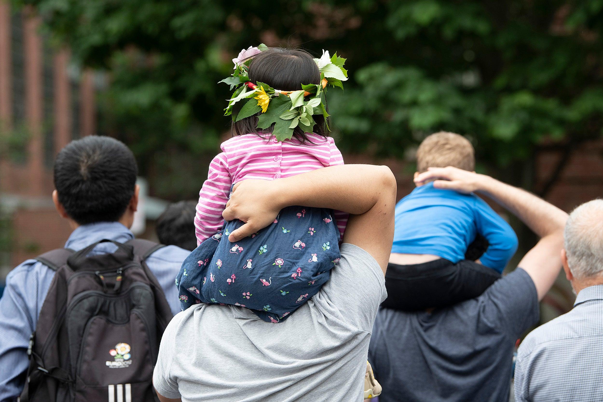 Harvard museums host Summer Solstice Celebration