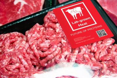 Package of lab-grown meat.
