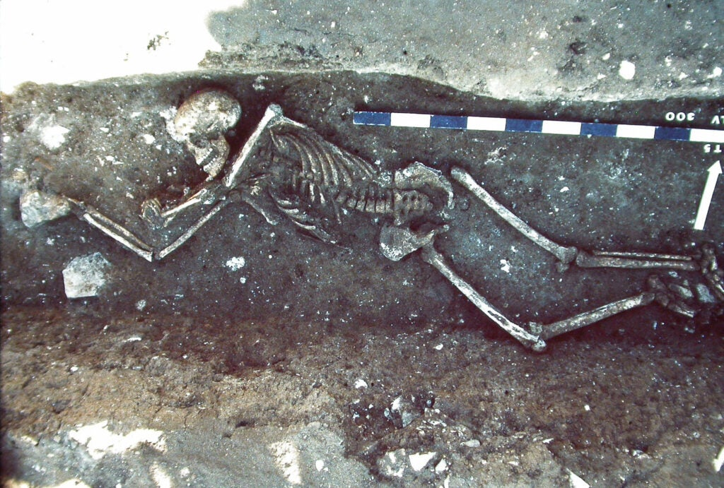 A tomb with a human skeleton