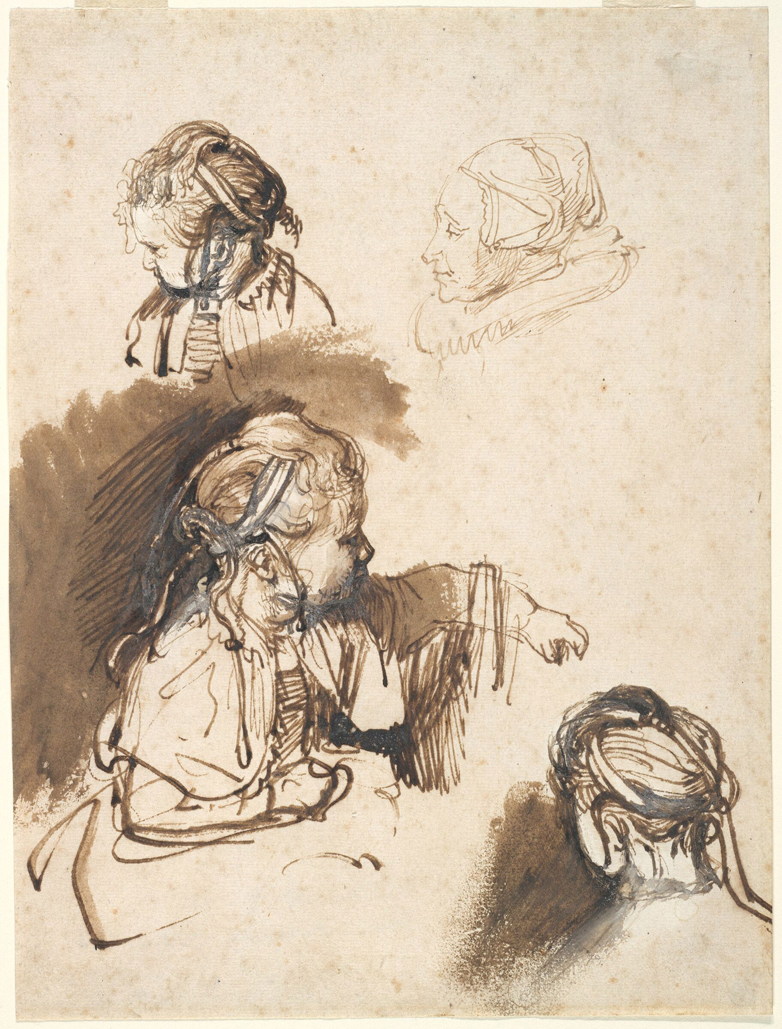 Rembrandt drawing offers a close look at artist's hand