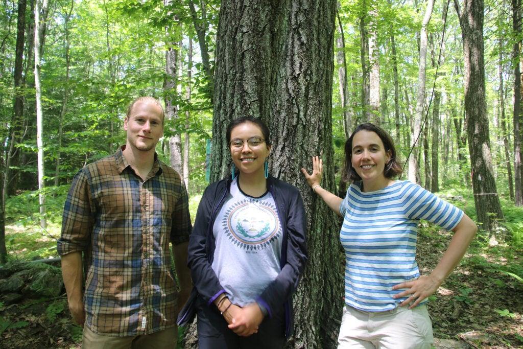 Three members of the Witness Tree team