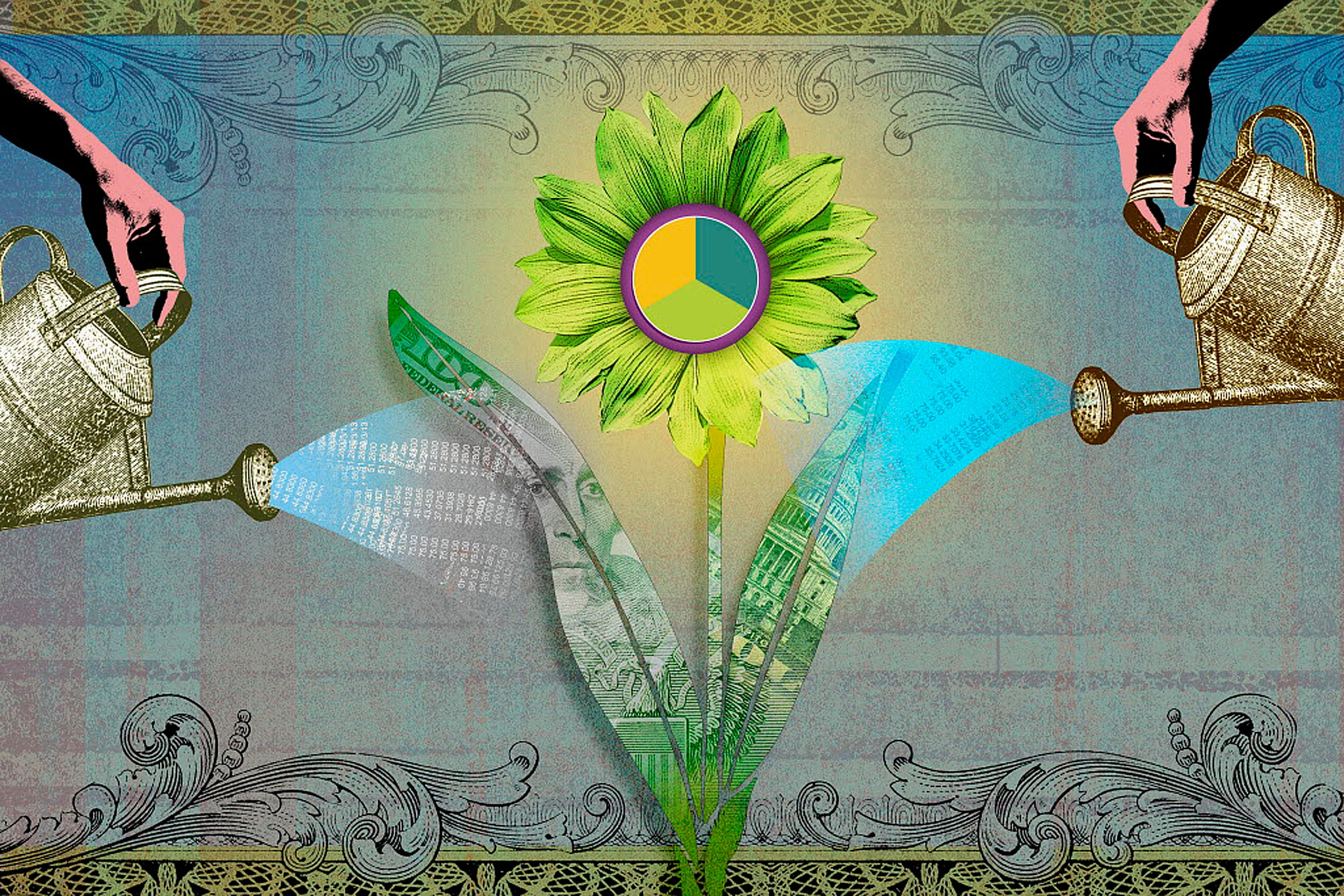 Illustration of financial flower being watered