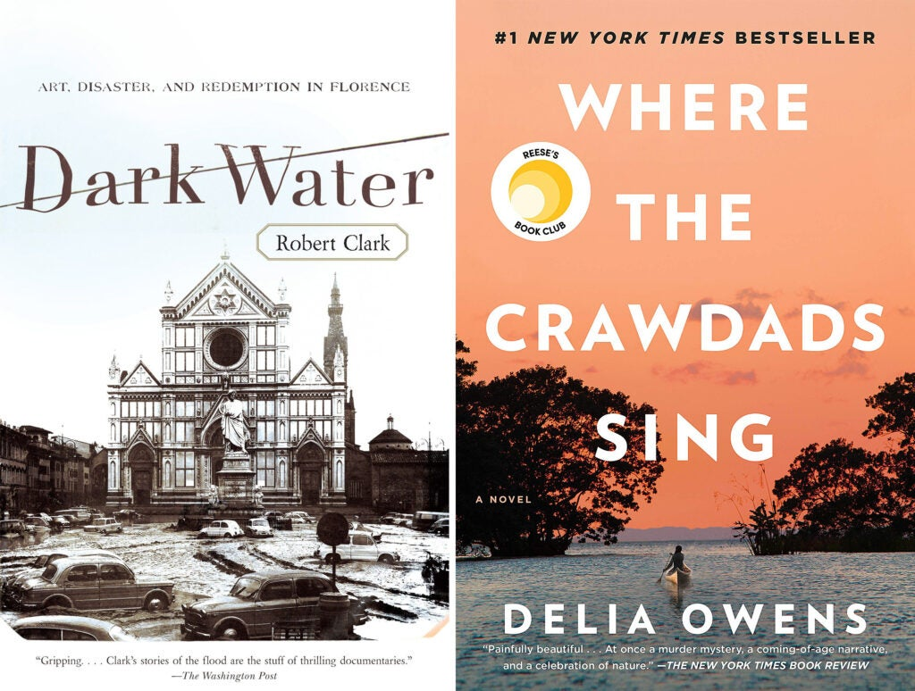 Dark Water and Where the Crawdads Sing book covers