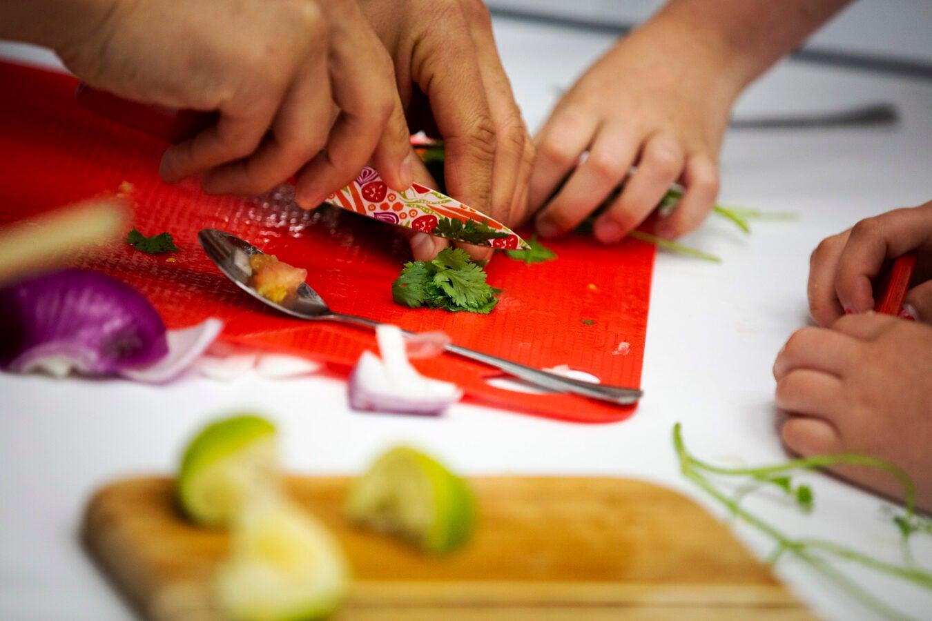 Students chop parsley.