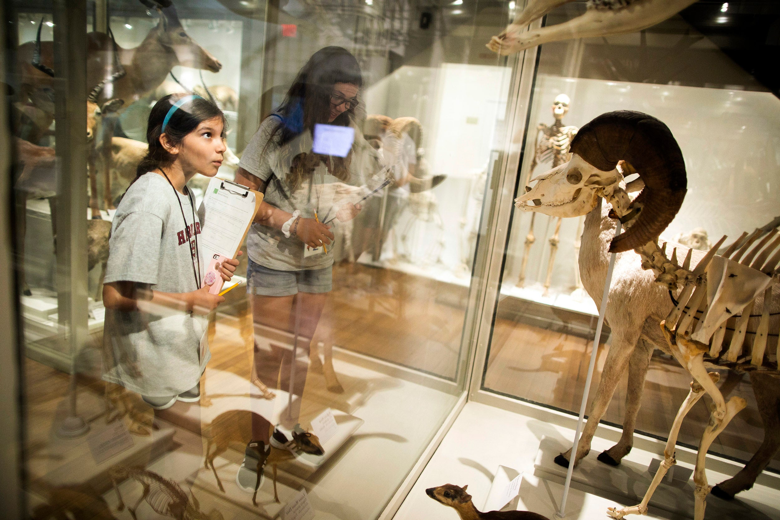 Addison Rich and Olivia Pappas explore some of the wonders at the Harvard Museum of Natural History.