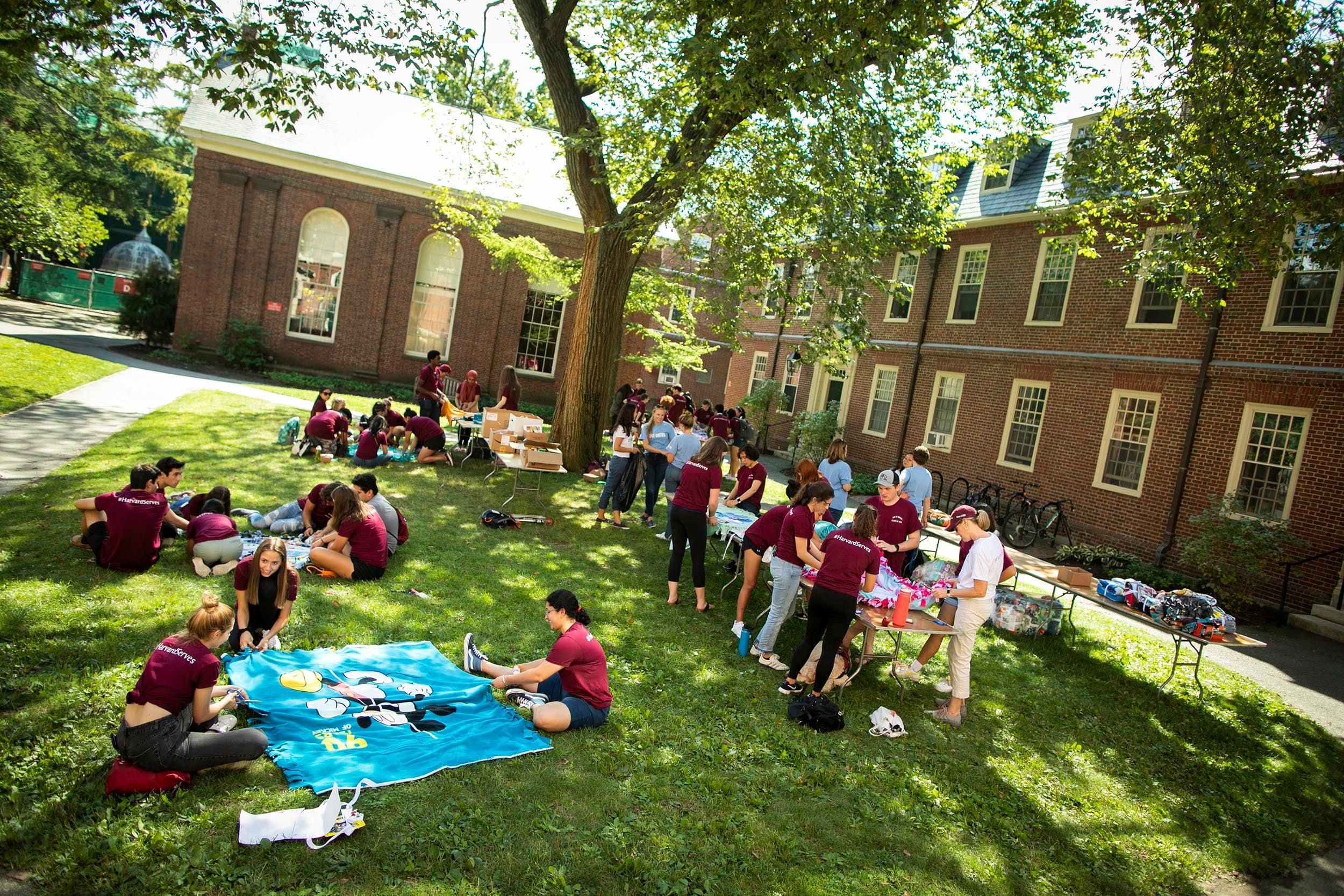 Volunteers in Harvard Yard