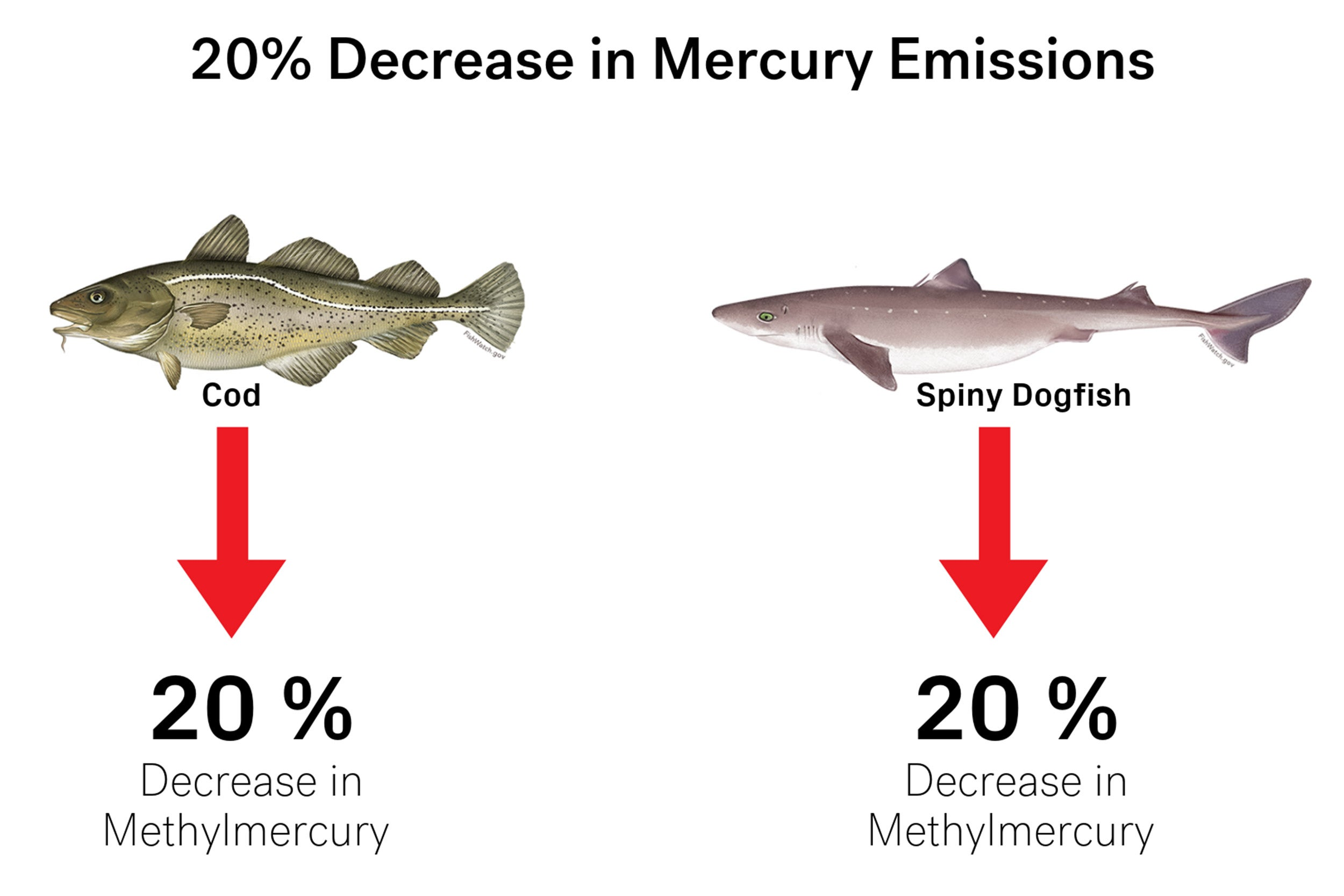 Graphic of decrease in mercury emissions