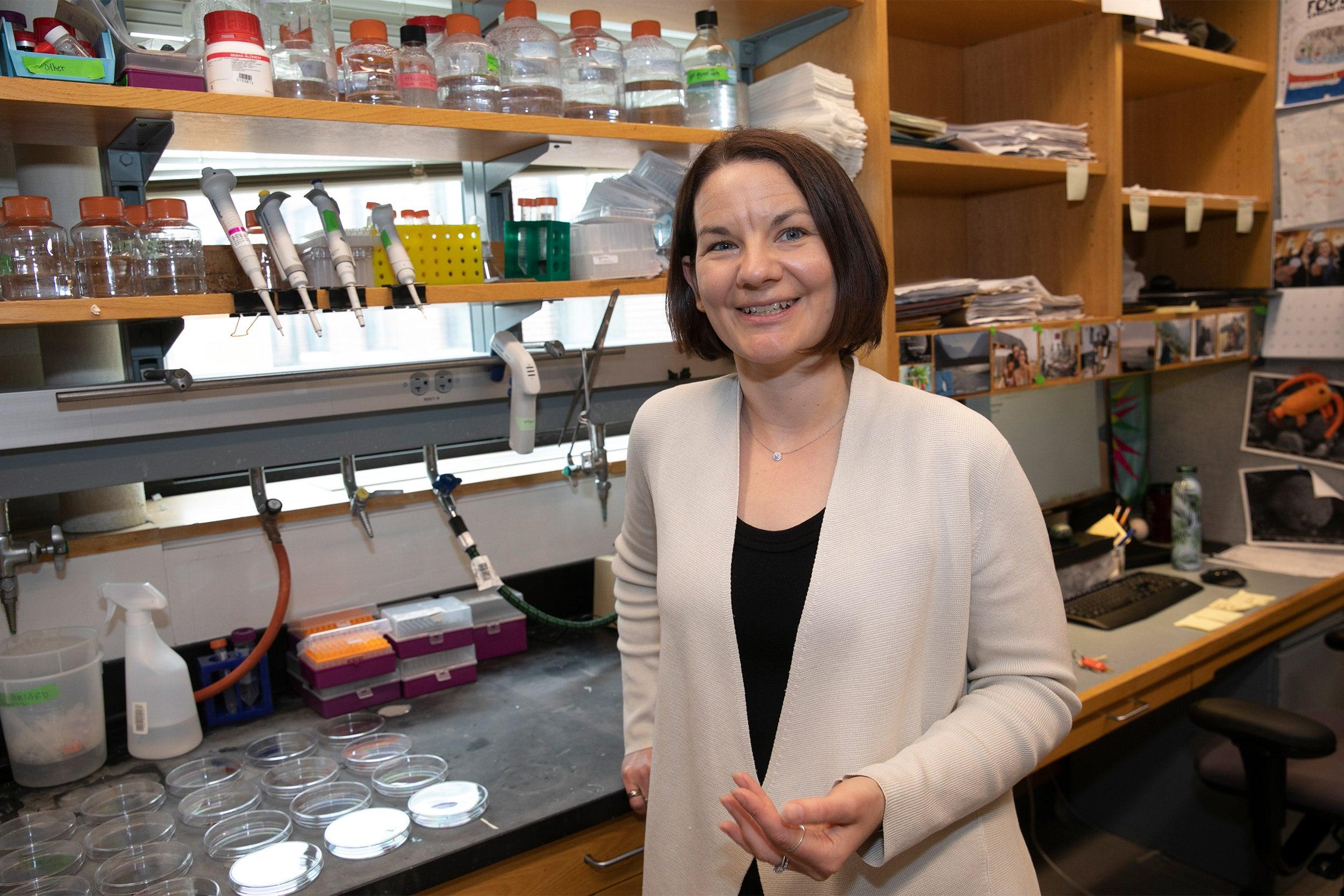 Emily Balskus in her lab.