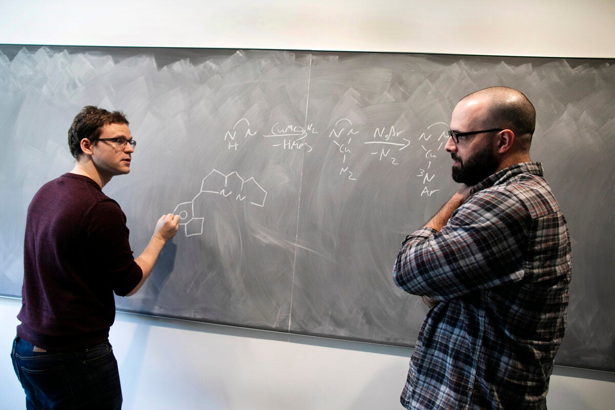 Erving Professor of Chemistry Theodore A. Betley and graduate student Kurtis Carsch