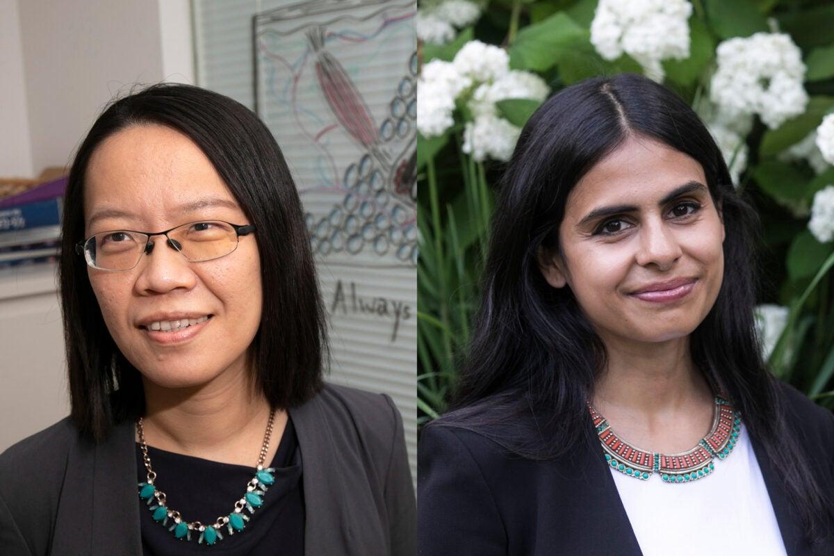 Harvard professors Ya-Chieh Hsu and Durba Mitra