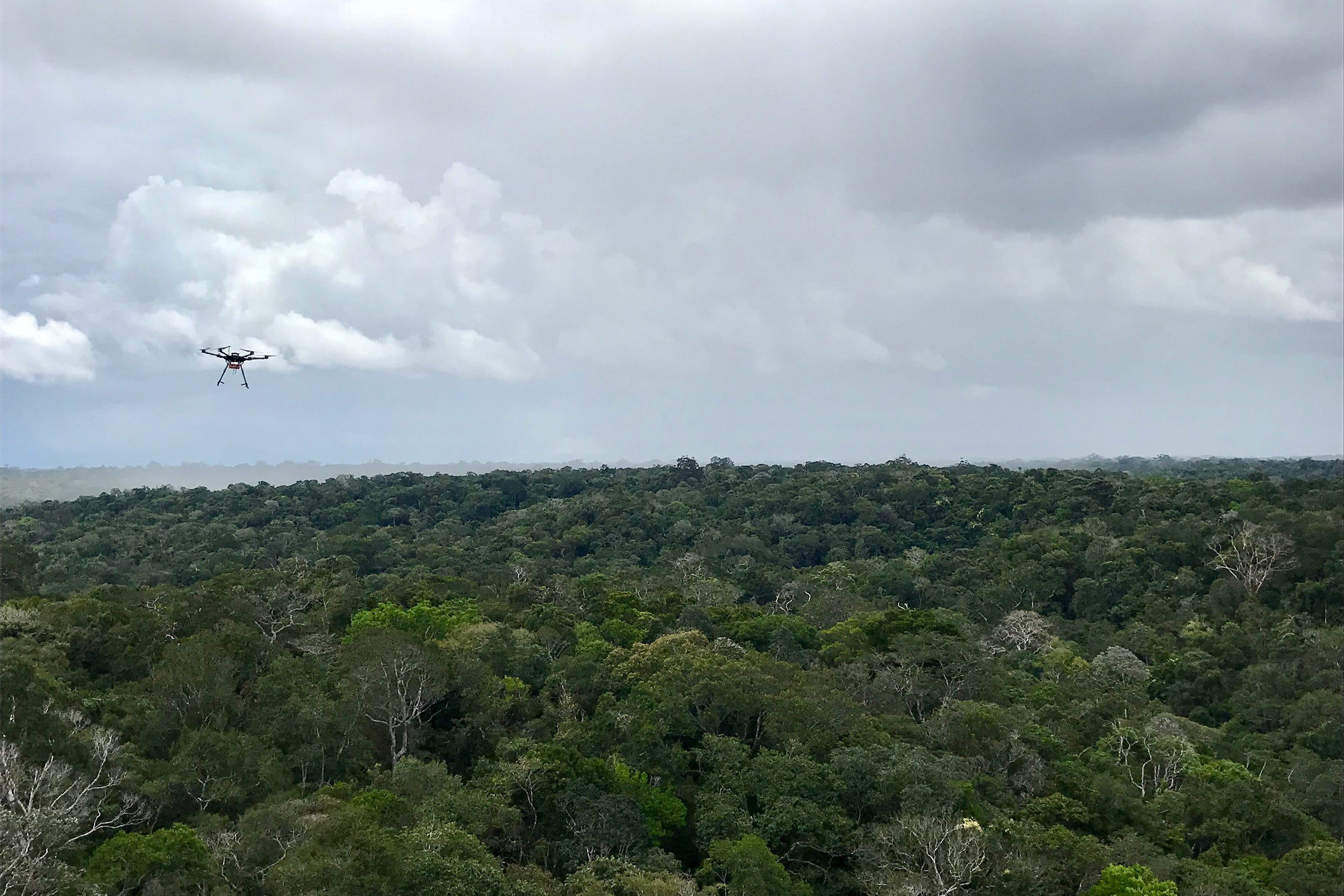 A drone flies over the amazon