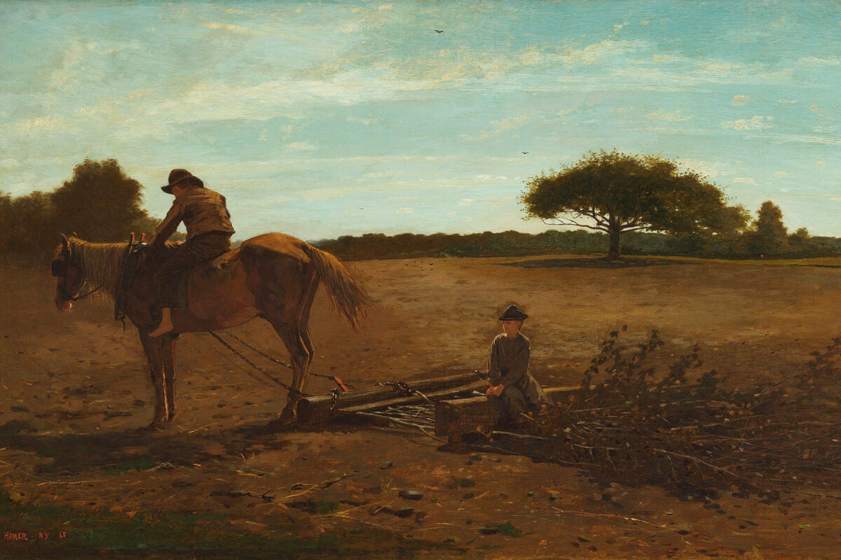Winslow Homer's Brush Harrow