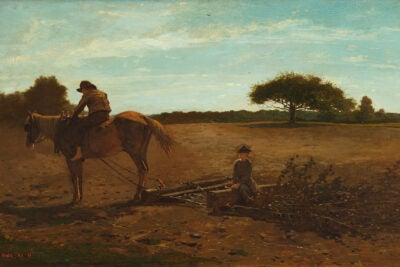Winslow Homer's Brush Harrow
