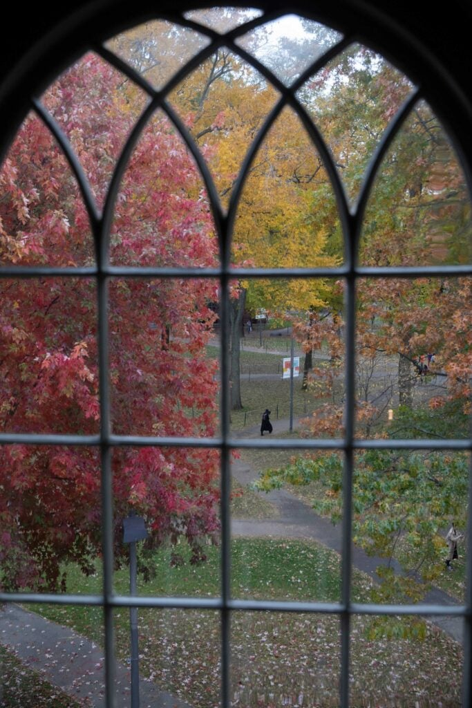 Looking out a framed window pane at fall foliage.