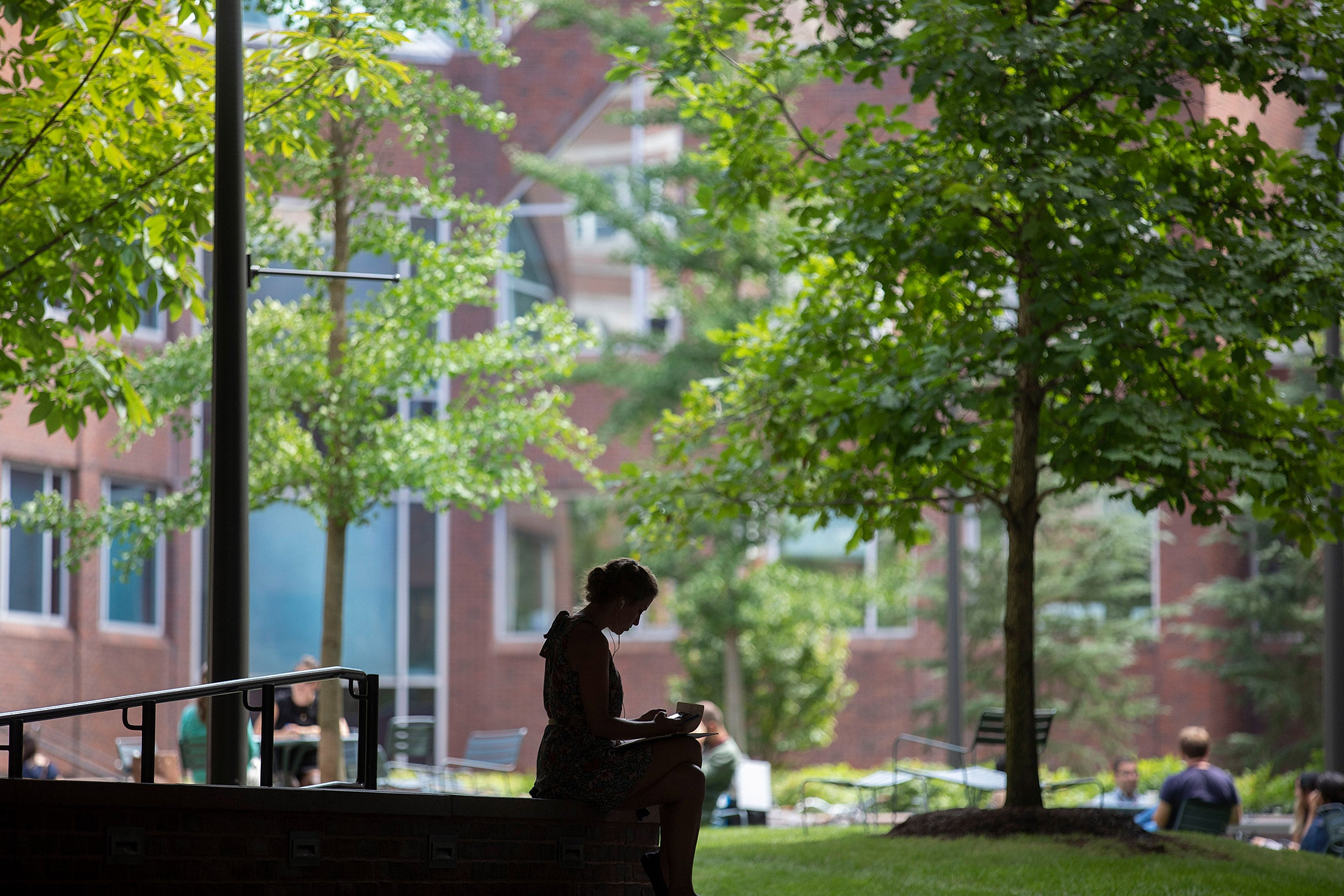 A silhouette of a student studying outside in the courtyard of Harvard Kennedy School