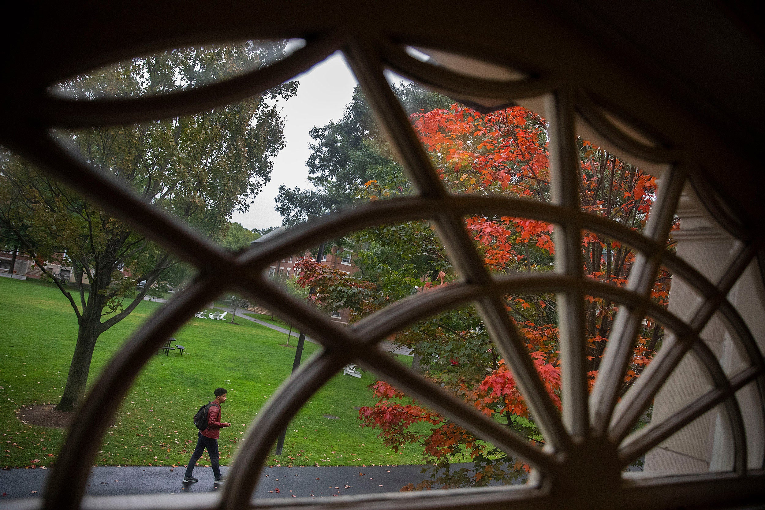 A student walking by a window with a frame that looks like a metal spider web.