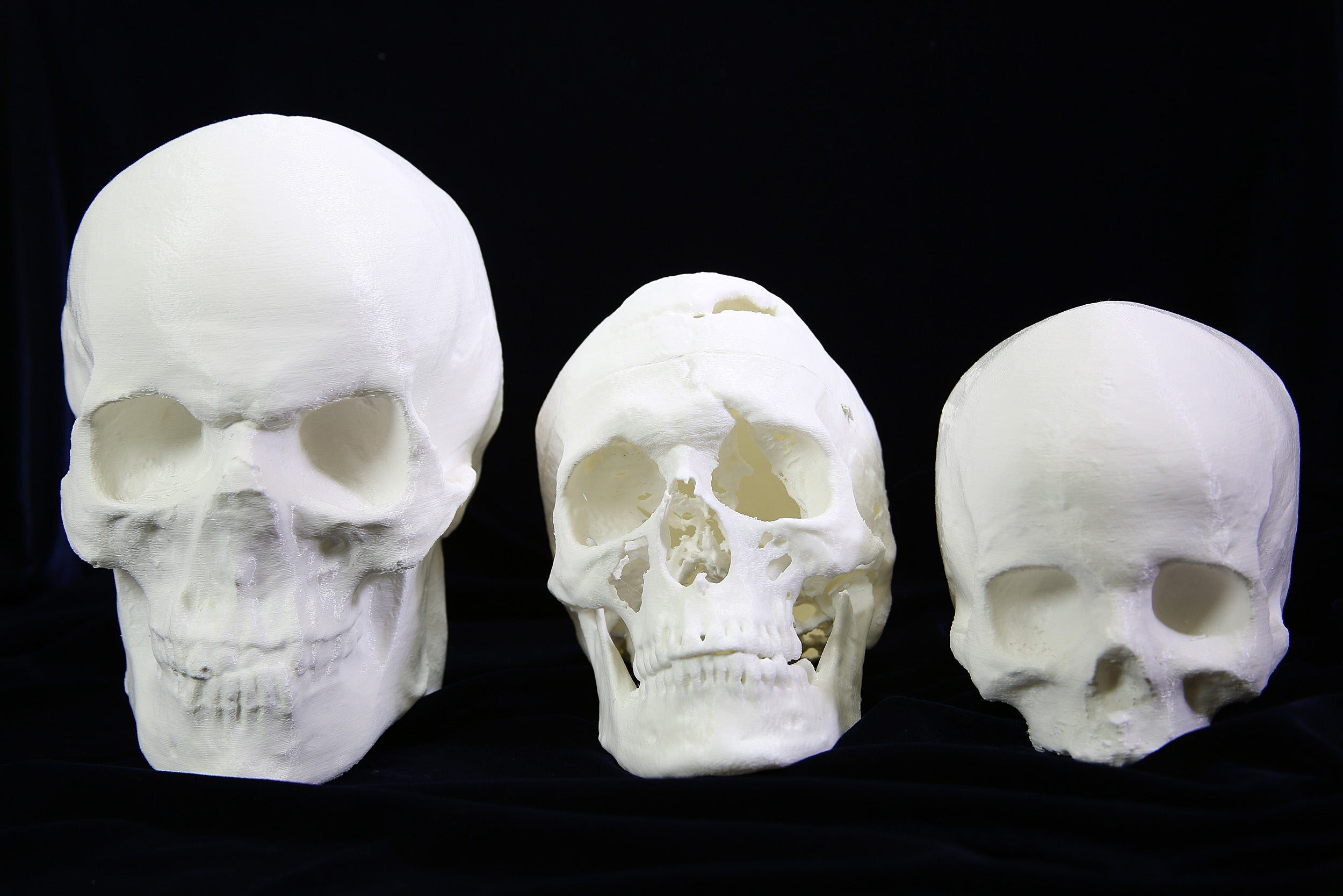 Three 3D printed skulls lined up against a black background