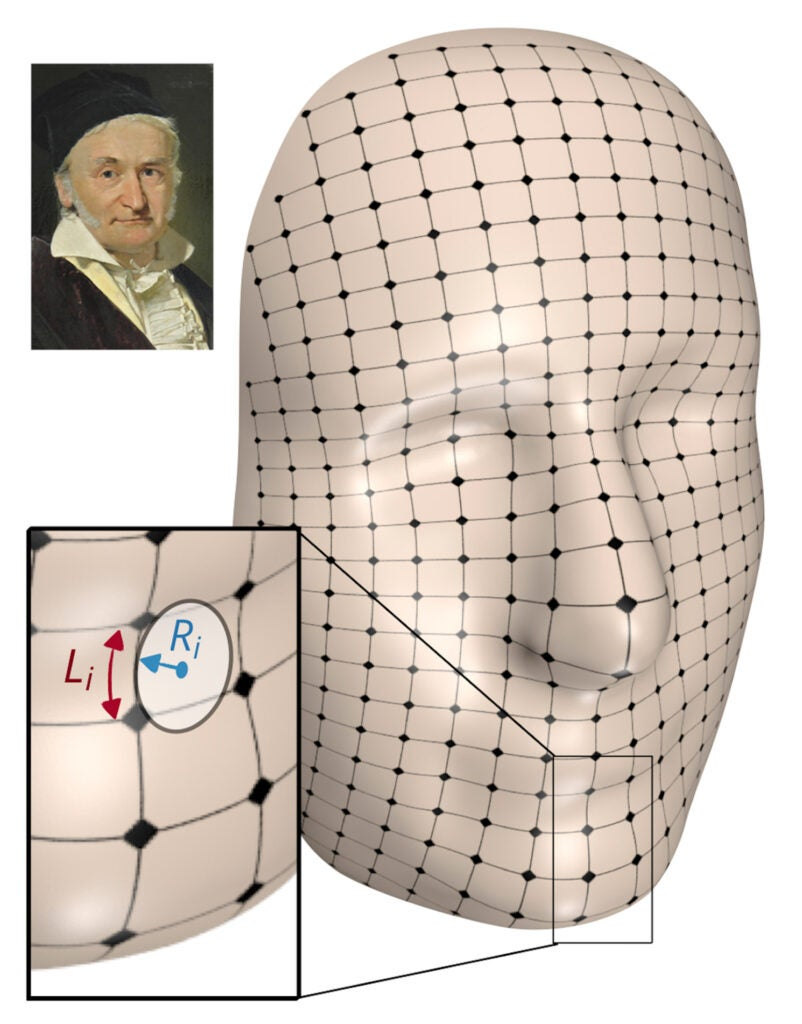 Carl Friederich Gauss and lattice framework