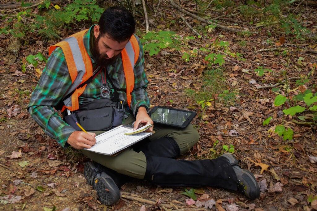 Sean Halloran records plant communities.