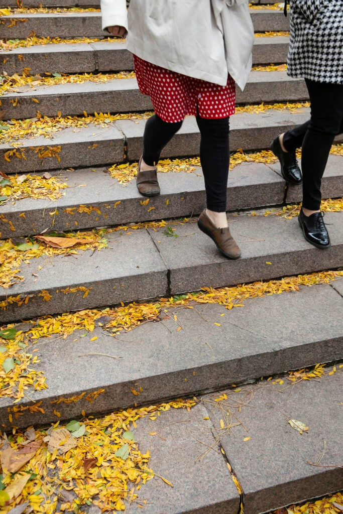 Students in polka dots and houndstooth descend the leaf-covered steps beside Houghton Library.