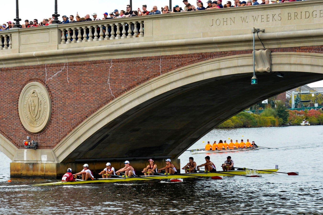 Harvard's boat in the men's lightweight eights race passes beneath the Weeks Footbridge.