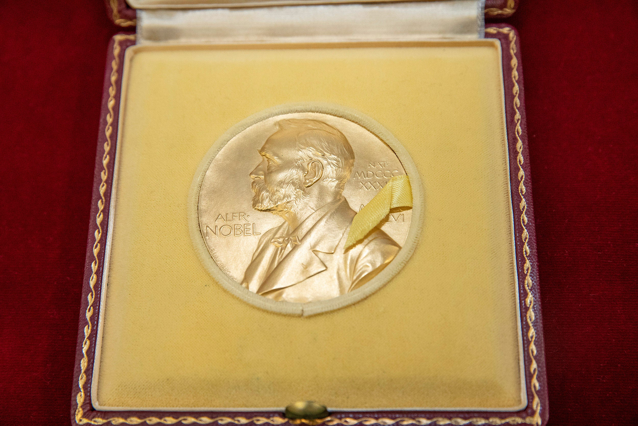 Photo of a Nobel Prize medal