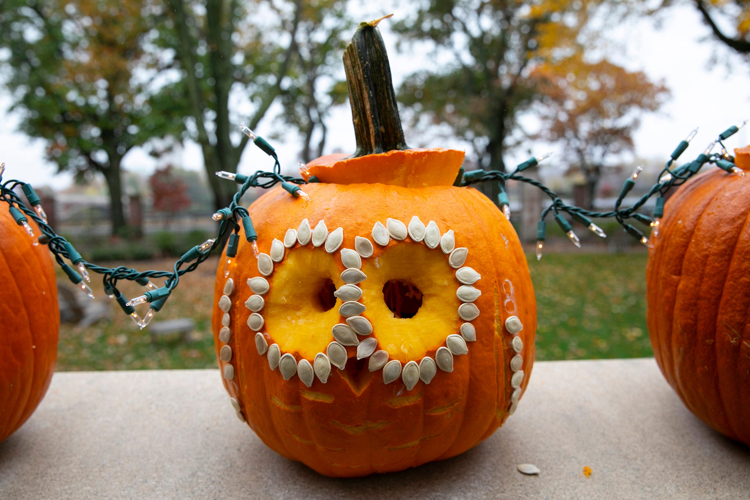A pumpkin decorated with pumpkin seeds is on display outside of Winthrop House.