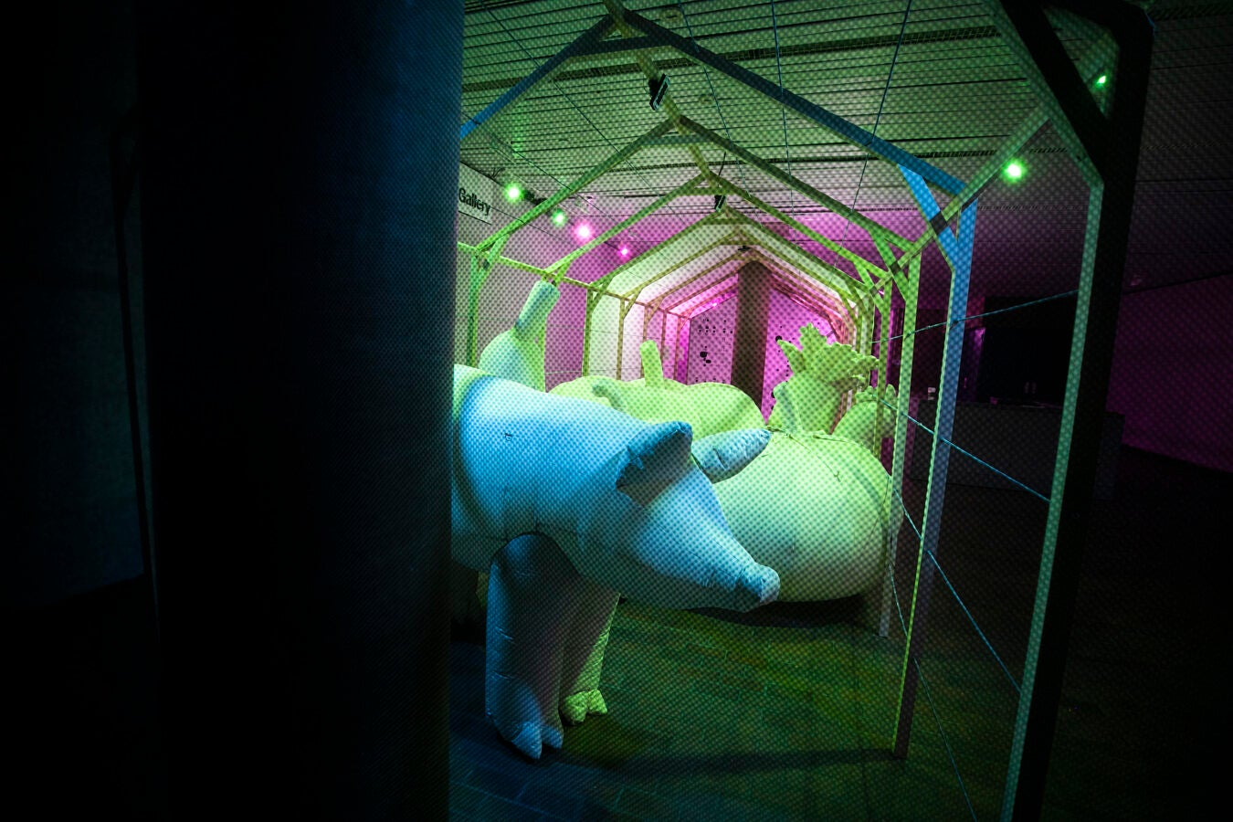 Large pink, green, and blue inflatable farm animals.