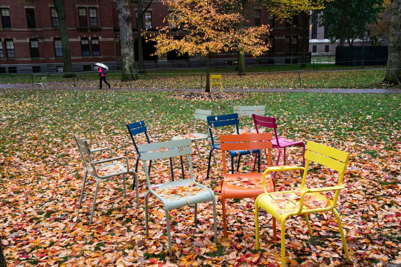 Empty chairs in Harvard Yard, littered with autumn leaves.