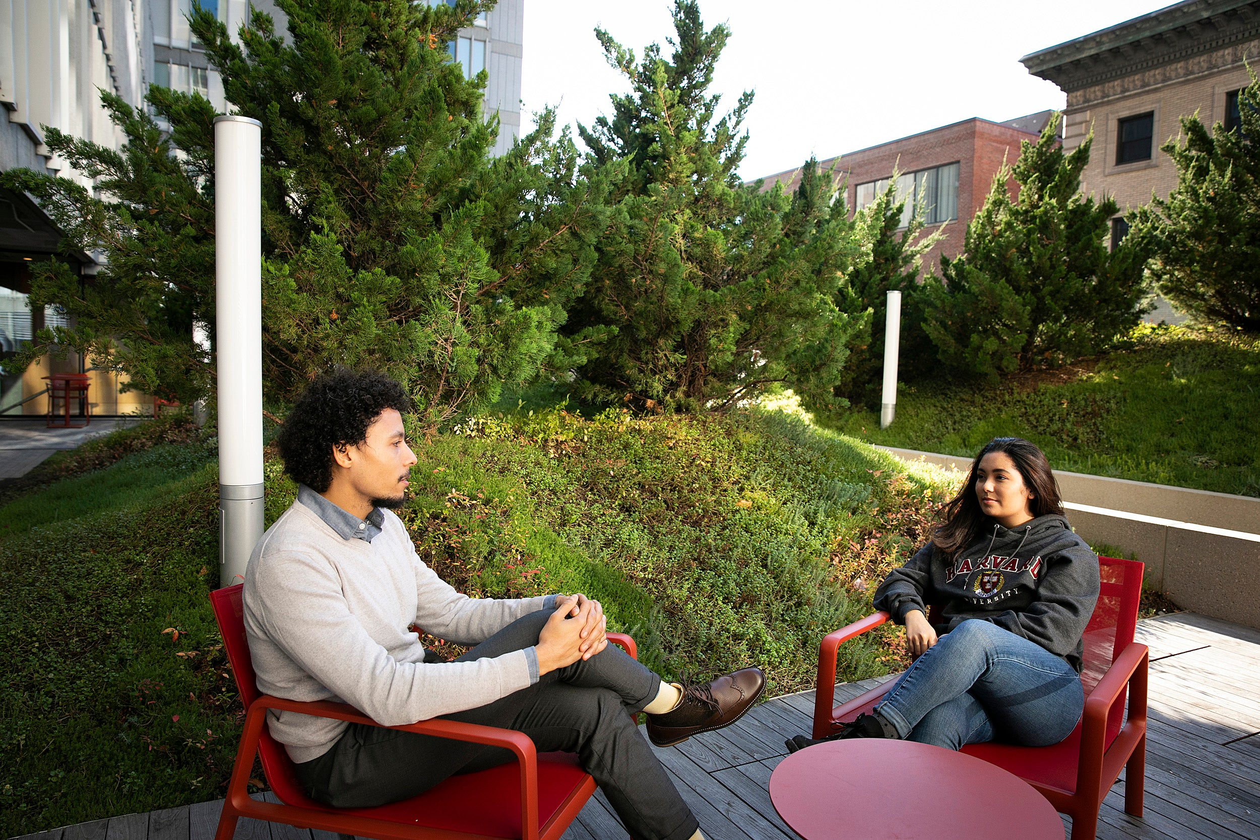 Two Harvard alums sitting in chairs