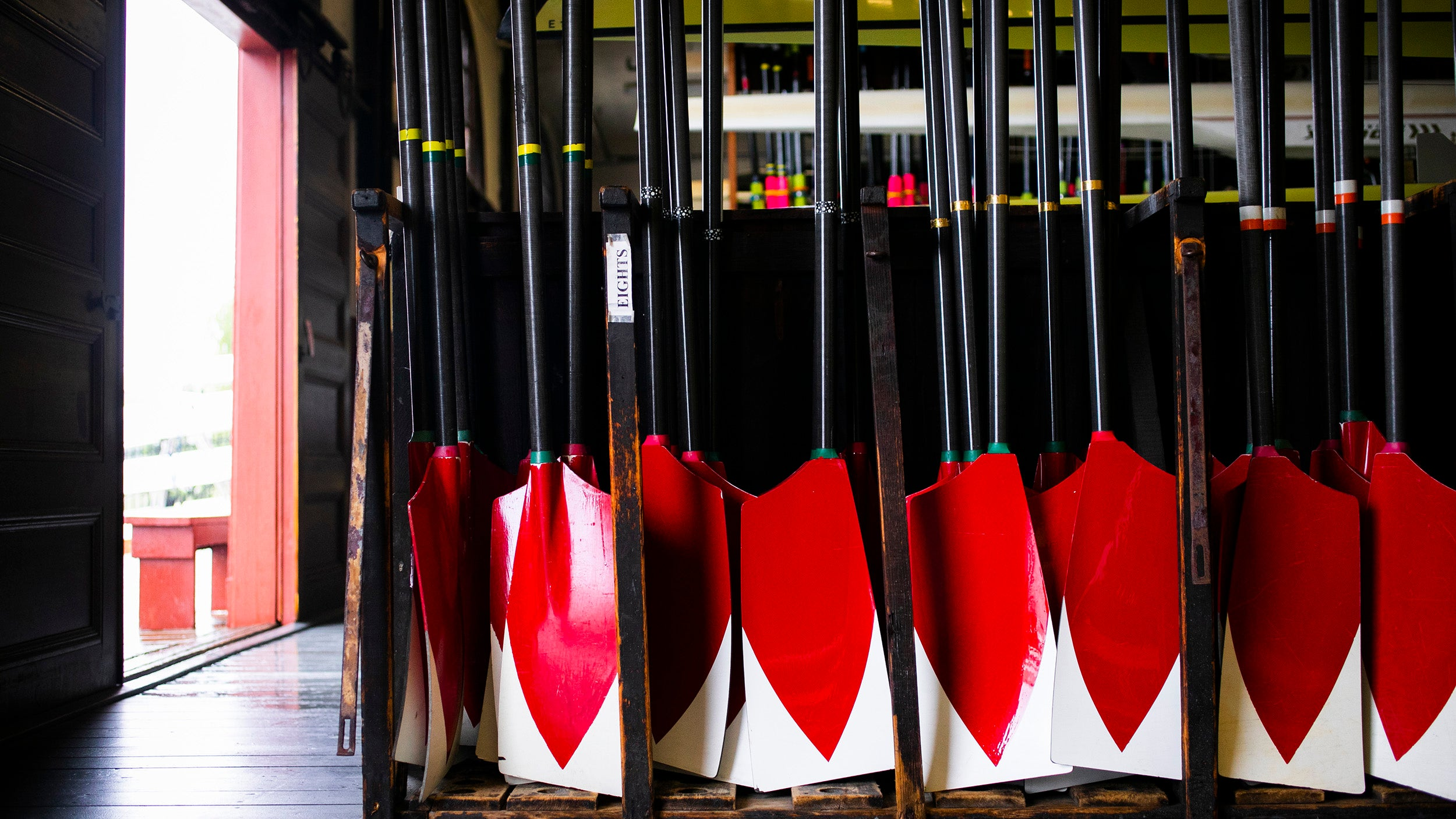 Rowing blades.