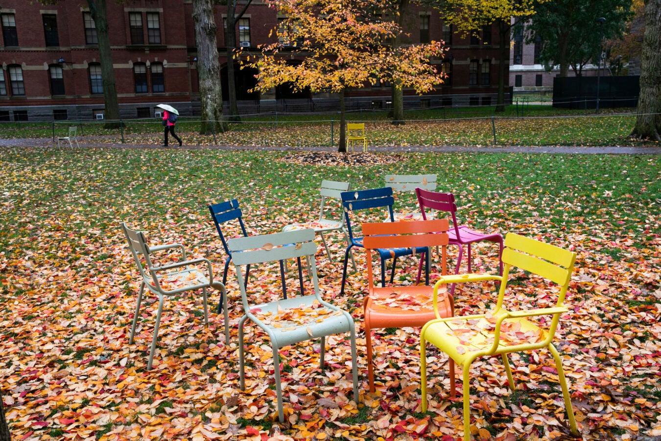 Colorful chairs in Harvard yard.