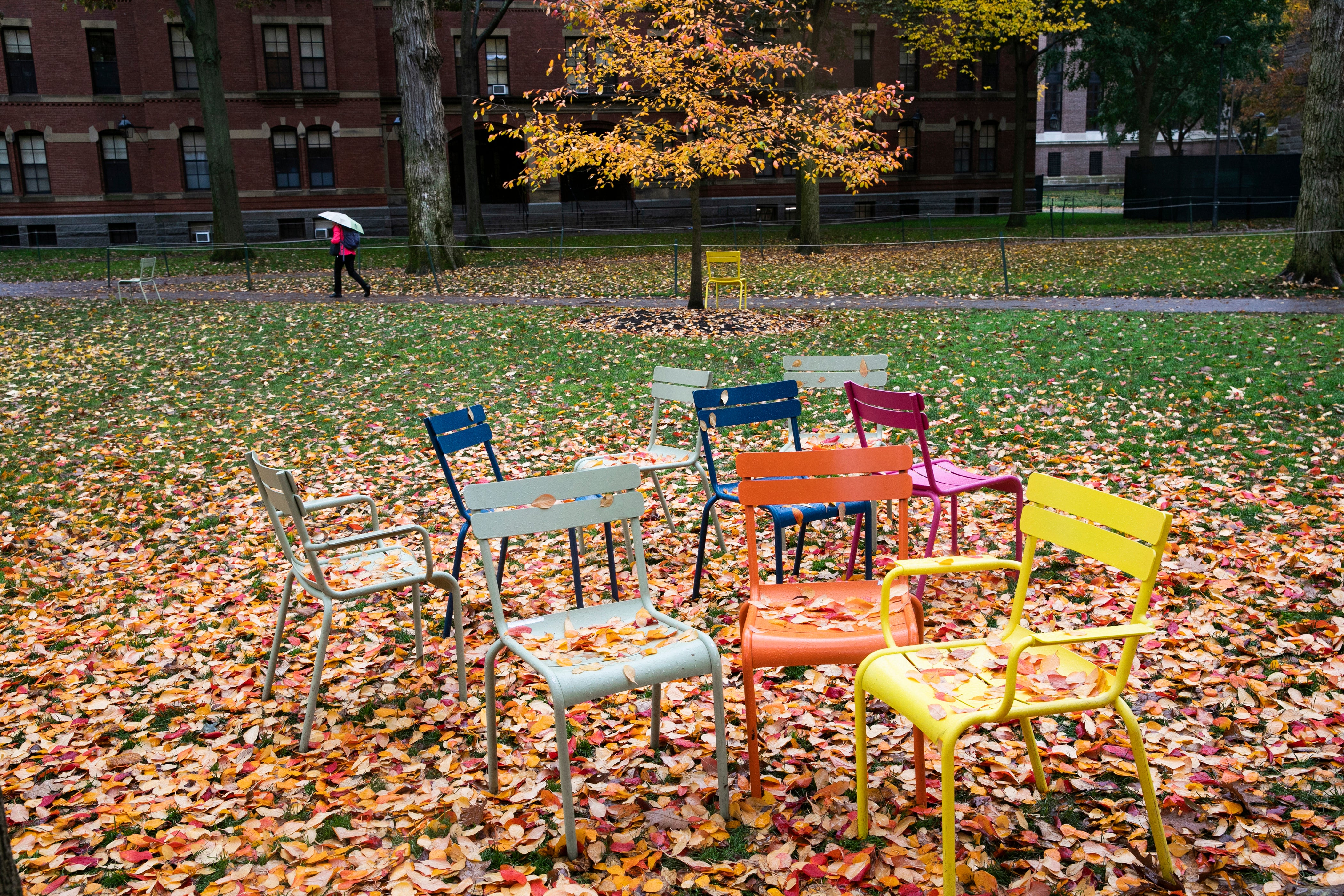 Colorful chairs in Harvard yard.