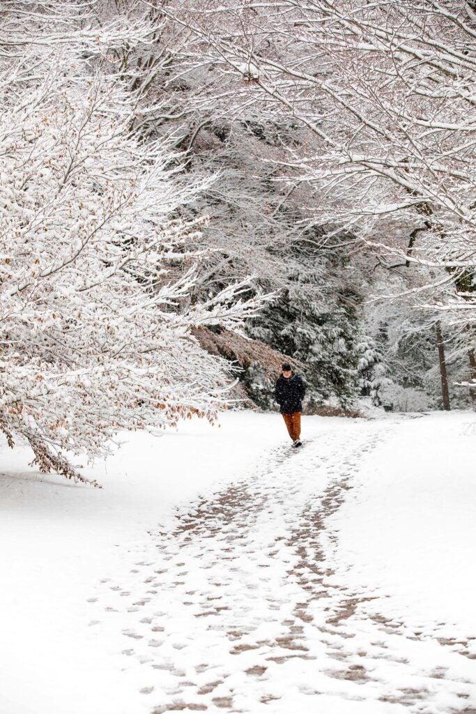 Anthony Apesos of Jamaica Plain walks along a snowy trail.